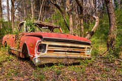 Could It Be Worse (Wayne Stadler Photography) Tags: abandoned preserved junkyard georgia classic automotive derelict overgrown vehiclesrust rusty retro vintage oldcarcity rustographer rustography white