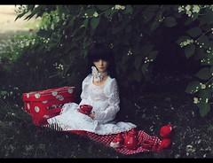 white (noir_saint_lilith) Tags: bjd doll dollmore zaollluv zaoll summertime whiteflowers