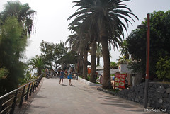 Playa de las Américas, Тенеріфе, Канарські острови  InterNetri  831