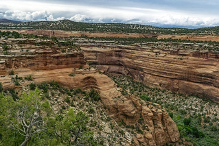 Ute Canyon (detail), 2015.07.14