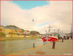 "Portbail Normandy France. (""DavidJHiom"") Tags: normandy france harbour portbail davomphotos davidjhiom galaxy fishing fishingboats"