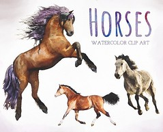 designeour: Watercolor Horses Clip Art by Presets Galore>> https://t.co/BGdTjVe19G https://t.co/QgPm5LJq2Z (designeour) Tags: design photography photo gear
