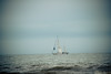 Looks like Rod Stewart's -Sailing (Resad Adrian) Tags: sailing boat ocean city new jersey shore summer