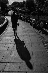 "Walking shadow • <a style=""font-size:0.8em;"" href=""http://www.flickr.com/photos/126602711@N06/28109877867/"" target=""_blank"">View on Flickr</a>"