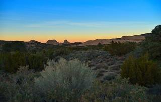 Pearblossom Desert