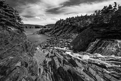 Stream through Silver Mine Head Path (stephgallant) Tags: ect eastcoasttrail eastcoast silvermineheadpath silvermine hiking backpacking trail rocks river stream ocean atlantic trees woods outdoors newfoundland nl stjohns middlecove torbay blackandwhite bw monochrome summer canon60d canon sigma1020mm sigma wideangle canoneos canada canoncanada