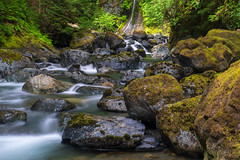 Therriault Falls (cdnfish) Tags: therriaultfalls comoxstrathcona vancouverisland bc britishcolumbia canada water waterfall white green moss forest rapid temperaterainforest rocks rapids trees longexposure longexposures landscape landscapephotography