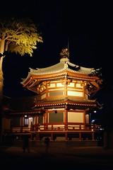 不忍池弁天堂 Shinobazunoike Bentendo (Brian Aslak) Tags: tokyo 東京 kanto 関東 japan 日本 nihon asia 上野公園 uenokōen 上野 ueno city urban park 不忍池弁天堂 shinobazunoikebentendo temple night öö noche