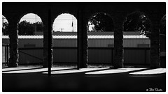 Arches of Light (PEN-F_Fan) Tags: microfourthirds mft m43 mirrorless raw photoborder photoedge photoframe olympus olympusomdem1 mzuikodigital45mmf18 baird texas unitedstates usa building shell arch floor flag blackandwhite filmlook monochrome on1photoraw2018 tonalityck preset postprocessing