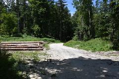 DSC_1932 (gregorv) Tags: slovenia slovenija kum planine mountains mountain nature narava