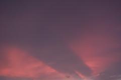RXV00825 (Zengame) Tags: rx rx100 rx100v rx100m5 rx100mk5 sony zeiss architecture illuminated illumination japan landmark night sky skytree tokyo tokyoskytree tower スカイツリー ソニー ツアイス 夜 日本 東京 東京スカイツリー 空 台東区 東京都 jp