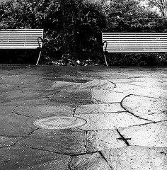 In the Park (Demmer S) Tags: benches pavement park lines seating rainyday raining ground sidewalk tiles circle round sewercover seats bench trees bushes outside outdoors minimal minimalism minimalist minimalistic simple simplistic simplicity rain rainy street streetphotography shootthestreet streetshots documentary citylife urban city urbanphotography streetscene manholecover urbanexploration outdoorseating bw monochrome blackwhite blackandwhite blackwhitephotos blackwhitephoto