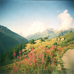 zermatt (thomasw.) Tags: zermatt alps alpen wallis valais schweiz switzerland suiza suisse europe europa wanderlust travel travelpics holga cross crossed expired 120 fuji film analog mf