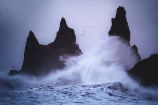 Storm Shores