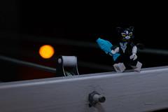 Aperitivo a media noche (Marmotuca) Tags: lego gata pescado noche aperitivo pez felino ciudad