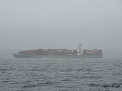 Container Ship (Greencraftingkid) Tags: halifax seals lighthouse canadaexploring