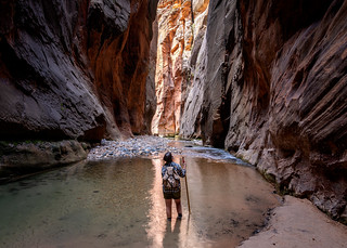 Zion Katie in the Canyon