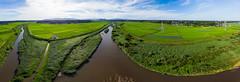Koise River (schmaeche) Tags: reis koise pano flus agriculture takahama drone panorama river dronie air landwirtschaft field rice feld koisegawa mavic japan dji ishiokashi ibarakiken jp