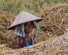 IMGP1414 The toothless farmer smile (Claudio e Lucia Images around the world) Tags: farmer ubud bali indonesia rice ricefields smiling toothless smile nice person pentax pentaxk3ii pentax18135