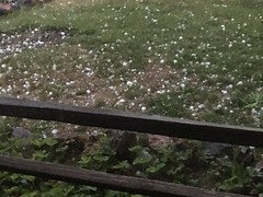 June 18, 2018 - Large hail on the ground. (LE Worley)