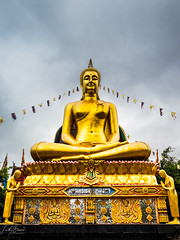Buddha (Laith Stevens Photography) Tags: olympusau olympus olympusinspired olympusfeatures getolympus buddha temple travel thailand 1240mmf28pro em1mkii omdem1mkii wideopen golden gold serene symetry outdoor explore asia