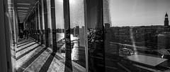 Fensterfront im 15.Stock der Elphi sw (p.schmal) Tags: panasonicgx80 hamburg elbphilharmonie treppenhaus fensterfront