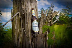 2012-14-Krombacher (jp.selter) Tags: sauerland krombacher bier flasche baum tree bottle natur nature