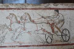 IMG_4984 Paestum (drayy) Tags: paestum greek rome roman ancient temple town magnagraecia italy campania europe