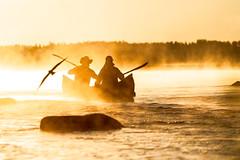 canoeing in the morning 2 (VisitLakeland) Tags: finland summer aamu auringonnousu canoe järvi kanootti kesä koskenniska koski lake luonto maisema meloa melonta morning nature outdoor paddle river scenery shore sumu sun sunrise vastavalo virta water