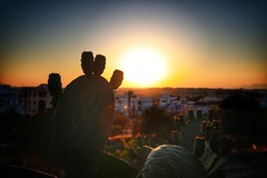Before Sunset (3) (Polis Poliviou) Tags: nicosia lefkosia street summer capital life live polispoliviou polis poliviou πολυσ πολυβιου cyprus cyprustheallyearroundisland cyprusinyourheart yearroundisland zypern republicofcyprus κύπροσ cipro кипър chypre chipir chipre кіпр kipras ciprus cypr кипар cypern kypr ©polispoliviou2018 streetphotos europe building streetphotography urbanphotography urban heritage people mediterranean roads afternoon architecture buildings 2018 city town travel naturephotography naturephotos urbanphotos neighborhood