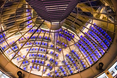 Reichstag dome oversee debating chamber (Daniel Poon 2012) Tags: berlin germany de musictomyeyes artistoftheyear amazingphoto 123 blinkagain blinkstomyeyes flickr nikonflickraward simplysuperb simplicity storytelling nationalgeographic ngc opticalexcellence beauty beautifullight beautifulcapture level2autofocus landscape waterscape bydanielpoon danielpoonca worldtravel superphotosgroup theamusingphotogroup powerofnikon aplaceforgreatphotographers natureimage focusandclick travelaroundthe world worldmasterpiece waterwatereverywhere worldphotography yourbestphotography mybestphotography worldwidewandering travellersworld orientalland nikond500photography photooftheyear nikonshooters landscapeoftheworld waterscapeoftheworld cityscapeoftheworld groupforallusersofnikon chinesephotographers
