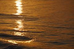 P1100647 (harryboschlondon) Tags: fuengirola july2018 spain espana andalucia harryboschflickr harryboschlondon harrybosch july 2018 costadelsol sunrise sunset