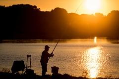 Fishing Sun (NathalieSt) Tags: europe france hérault lagrandemotte languedocroussillon occitanie borddemer mer nikon nikond5500 nikonpassion nikonphotography sea seaside