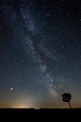 20 Seconds of Mars (M-Z-Photo) Tags: milchstrase sternenhimmel himmel langzeitbelichtung deutschland baum landschaft natur nachtaufnahme nacht