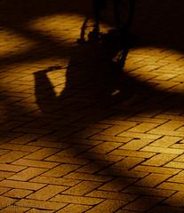 Riding through the pattern (05-06-2018) by #MrOfColorsPhotogaphy #InspireMediaGroningen #PortfolioOfColors (mrofcolorsphotography) Tags: streetphotography street streetphotographer streets groningen bicycle canonnederland canon canonphotography canon80d mrofcolors mrofcolorsphotography journeyofcolors journey photographer photooftheday photography photo photos fotografie foto day daytime daylight light stone stones netherlands inspiremedia inspiremediagroningen sunlight sun sunny sunshine shadow shadows dillenvandermolen portfoliofocolors portfolio portfolioofcolors contrast contrasty city cityphotography cityphotographer bicycles riding