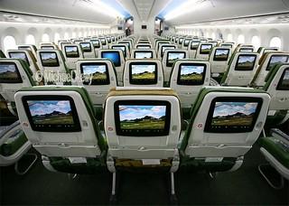 Ethiopian Airlines                                         Boeing 787 Dreamliner                                       ET-ASG