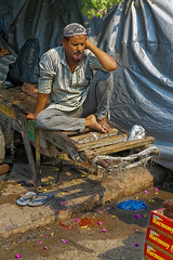 _MG_0457_DxO (carrolldeweese) Tags: newdelhi india