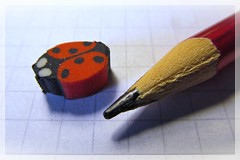 ladybug eraser :) (green_lover (your COMMENTS are welcome :))) Tags: pencil eraser ladybug paper square macromondays erasers macro red