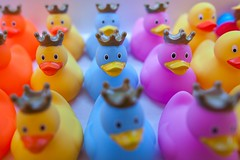 rubber duck-mania (nzfisher) Tags: rubberduck rubber duck toy closeup bokeh blue yellow purple colour color colourful colorful crown duckstorebarcelona barcelona spain travel holiday canon 24mm