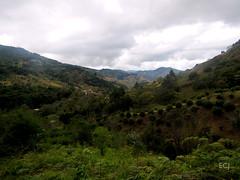 Paisaje del valle del río Blanco (Pirrís)/ The valley of Blanco (Pirrís) river (vantcj1) Tags: vegetación naturaleza colina pendiente ladera campo rural caminata valle
