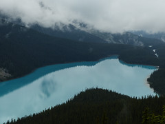 Peyto Lake from the Lookout (annkelliott) Tags: alberta canada wofcalgary banffnationalpark rockymountains highway93 icefieldsparkway peytolake nature landscape scenery mountains lake water glacierfed forest trees cloud lowcloud hiddenpeaks viewpoint breathtaking outdoor summer 23june2018 fz200 fz2004 annkelliott anneelliott ©anneelliott2018 ©allrightsreserved