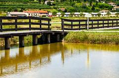 Parco naturale Saline di Sicciole (Slovenja) / Natural Park of Sicciole (Slovenja) (giannizigante) Tags: slovenia passeggiata saline sicciole