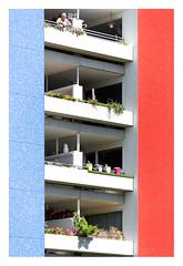 Living between blue and red (leo.roos) Tags: blue red blauw rood balcony balconies balkon dedemsvaartweg thehague denhaag architecture architectuur a7rii tamronspaf180mmf35dildif amount tamron18035macro day180 dayprime2018 dayprime dyxum challenge prime primes lens lenzen brandpuntsafstand focallength fl darosa leoroos woningbouwfestival keeschristiaanse