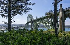 Style (Yaquina Bay Bridge) (TCeMedia/Telecide) Tags: yaquina bay bridge art deco moderne sea landscape steel arch tree plants sky newport oregon coast highway