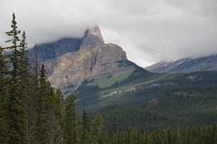 Castle Junction near Banff, Alberta, Canadian Rockies (nikname) Tags: canadianrockies mountains rockymountains therockies trees mountainsandtrees castlejunction albertamountains albertacanada banffnationalpark