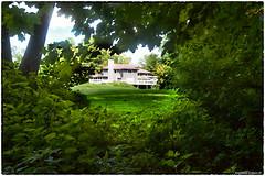 House in summer (RKop) Tags: d500 1020nikkoraf‑pdx nikon raphaelkopanphotography wildlife