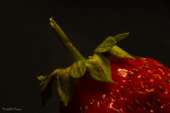 I thought I got it before the bird did (lamoustique) Tags: macro strawberry fruit chiaroscuro