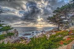 Pebbly Sunset (Michael F. Nyiri) Tags: 17miledrive pebblebeach california northerncalifornia ocean sunset clouds