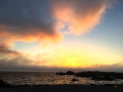 (andthensom) Tags: asilomarstatebeach pacificgrove california monterey sunset beach