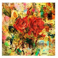 wallpaper 2 (Hood Ornaments) Tags: floral wallpaper abstract